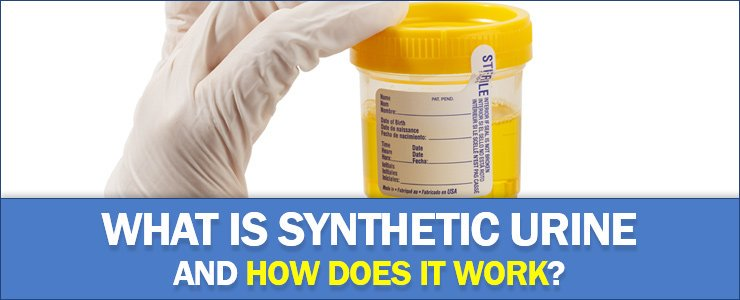 what is synthetic urine - does it work (HEADER)