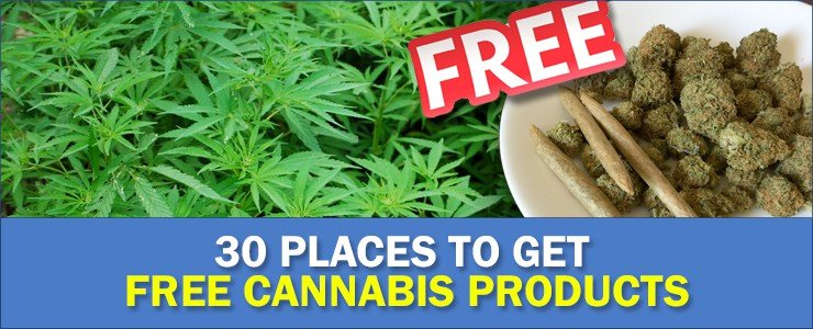 30 websites for free cannabis items